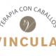 vincula2