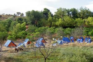 Campamento Biar
