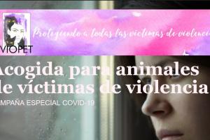Acogida de animales en situaciones de violencia de género