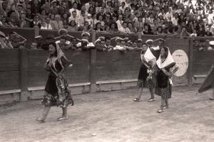 Festival en la plaza de toros