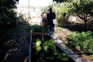 Medio Ambiente Subvenciones a Centros Escolares