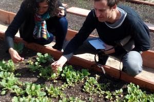 l'escola sostenible