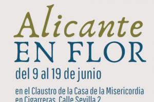 ALICANTE EN FLOR