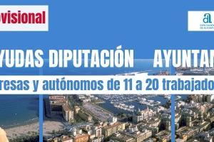 Resolución provisional - alegaciones ayudas plan Diputación Ayuntamiento Alicante
