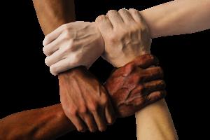 Plan de Acogida y Cohesión Social