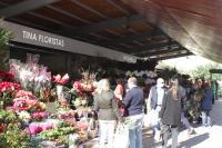 Los nuevos puestos de las flores de la plaza 25 de mayo