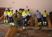 Varios operarios se afanan en la preparación de las cañas en una nave municipal