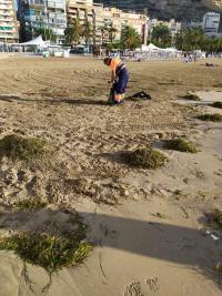 Operativo de limpieza de playas tras las lluvias torrenciales