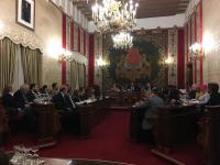 Sesión del Pleno
