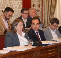 La concejala Julia Llopis interviene en un Pleno de fechas atrás