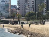 La Policía Local impone una veintena de denuncias en un día en Alicante