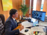 El alcalde de Alicante, Luis Barcala, en el Pleno telemático