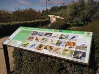 Mesa interpretativa sobre aves en parque inundable La Marjal