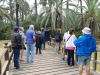 programa 'Camina Alicante'