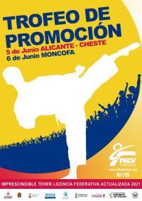 Cartel Trofeo Promoción Karate