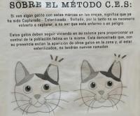 Cartel alusivo al control de colonias felinas
