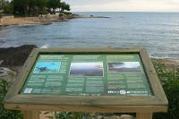 acció sensibilització ambiental platges