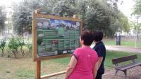 Campaña Voluntariado Ambiental, especies invasoras