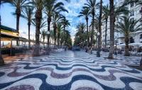 Palmeras Explanada Alicante