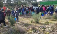 Reforestación en el Monte Orgegia