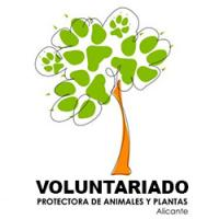 Documento Protectora de Animales